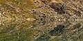 Gold Cord Lake near Hatchers Pass (2940095663).jpg