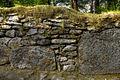 Grassy stone fence (8061811843).jpg