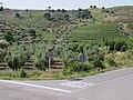 Gratallops, 43737, Tarragona, Spain - panoramio (1).jpg