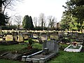 Graves in the Cemetery - geograph.org.uk - 1633531.jpg