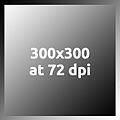 Gray300x300at72dpi.jpg