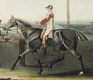 Gustavus (horse) - Gustavus in a painting by Robert Pollard, c. 1821.