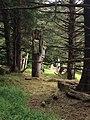 Gwaii Haanas National Park (27520040056).jpg