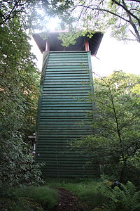 Hünstein (Gladenbacher Bergland) (1).jpg