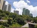 HK 城巴 619 CityBus 遊車河 tour view 觀塘區 Kwun Tong District 藍田 Lam Tin 鯉魚門道 Lei Yue Mun Road June 2020 SS2 25.jpg