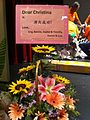 HK Sai Wan Ho Civic Centre song show flower sign 30-July-2013 Daisy Sunflower.JPG