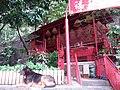 HK Tai Hang 銅鑼灣道 Tung Lo Wan Road 大坑福德古廟 Fuk Tak Temple dog July 2019 SSG 05.jpg