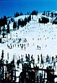 Habitat destruction, ski development, Feb 1972 (26857942975).jpg