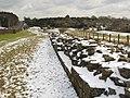 Hadrian's Wall (2) - geograph.org.uk - 1724590.jpg