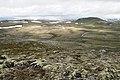 Hardangervidda - panoramio.jpg