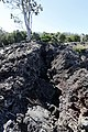 Hawaii Volcanoes National Park (504002) (21636931744).jpg
