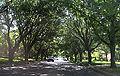 Highland Park, Texas.JPG