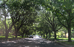 Highland Park, Texas - Tree-lined street in Highland Park