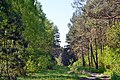 Hishyn Kovelskyi Volynska-Pryrichnyi nature reserve-view from the forest road-4.jpg