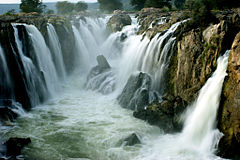 Hogenakkal Falls a close look.jpg
