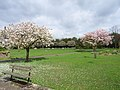 Holtspur Cemetery - geograph.org.uk - 162802.jpg