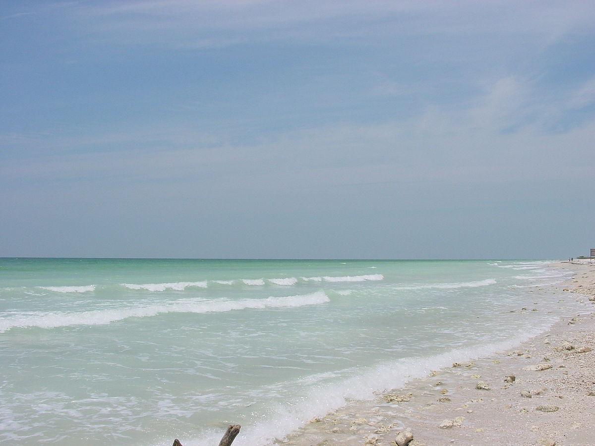 The Palm Beaches Florida Paradise At Full Throttle Music