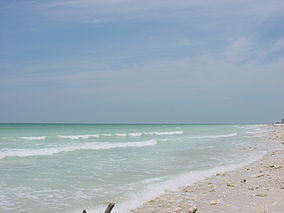 Honeymoon Island State Park (Image 1).jpg