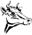 Horn (PSF).png