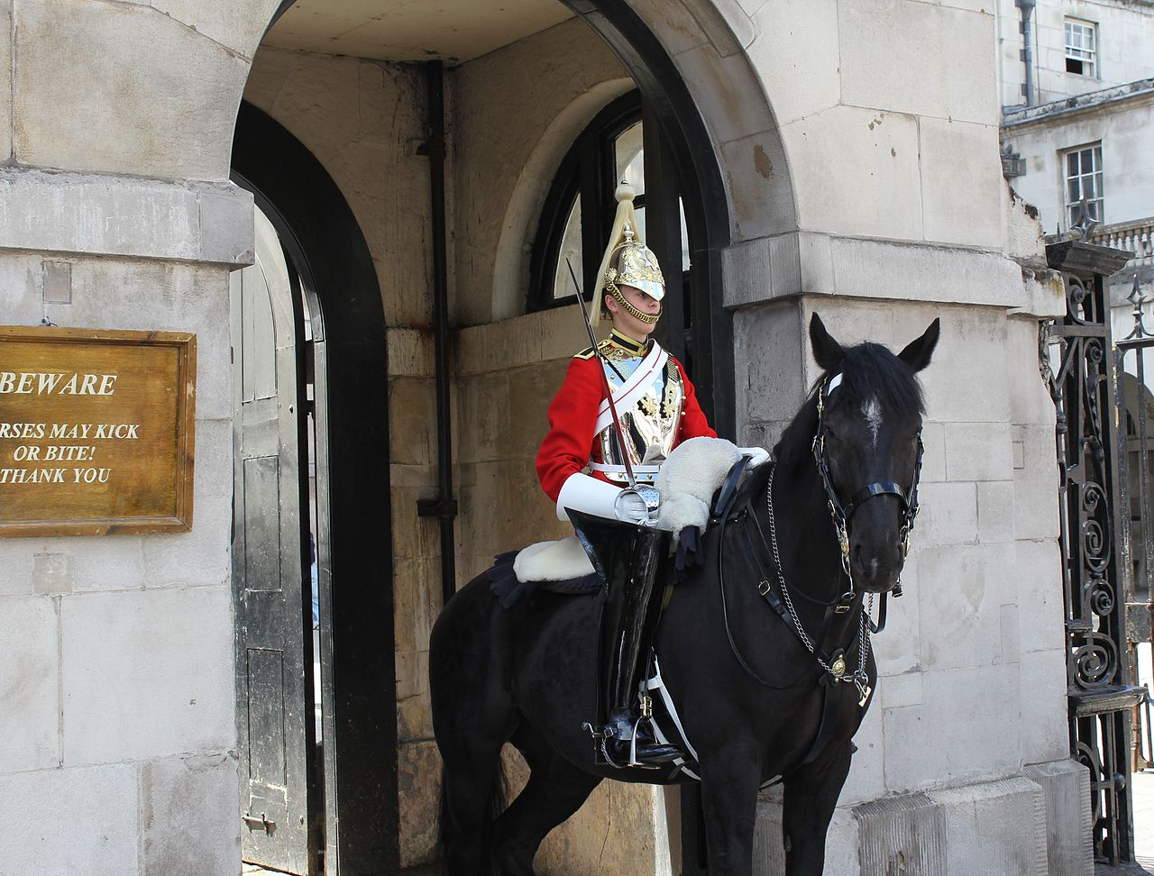 [img]https://upload.wikimedia.org/wikipedia/commons/thumb/1/1d/Horseguardsentry2010.jpg/1280px-Horseguardsentry2010.jpg[/img]