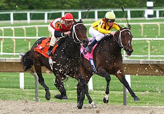 Horse racing - Horse racing at Arlington Park, 2007