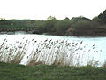 Howden Dyke on the River Ouse, East Riding of Yorkshire, England 02.jpg