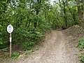 Hunyad Peak Nature Reserve. Entrance. - Budapest 12th district. Zugligeti road.JPG
