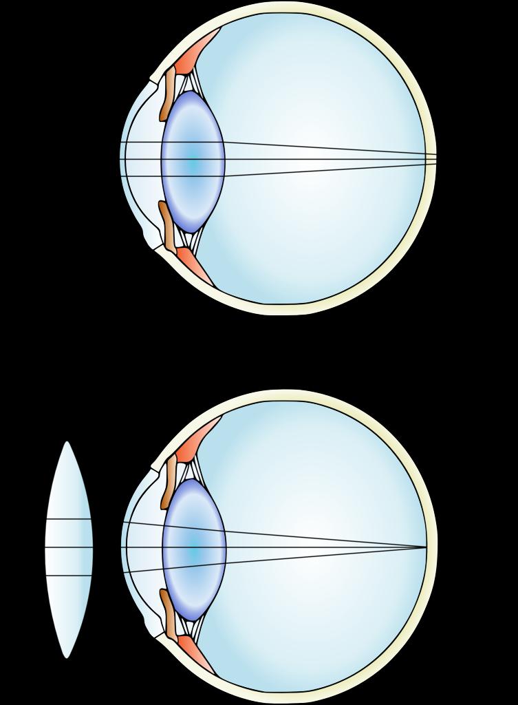 Driving Glasses Comparison