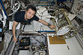 ISS-20 Koichi Wakata works in the Columbus laboratory.jpg
