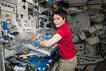 ISS-43 Samantha Cristoforetti with the Osteo-4 experiment.jpg
