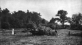 Ida Tarbell House farm.png