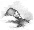 Illustrirte Zeitung (1843) 04 008 1 Theodor Kolokotroni auf dem Paradebette.PNG