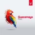 Ilustración Guacamayo Perú.png