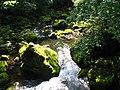 Irrel Wasserfälle 01+.jpg