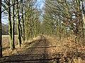 Isernhagen-herbst - panoramio.jpg