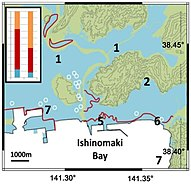 Ishinomaki Inundation areas of the 2011 Great East Japan Earthquake Ando et al 2013.jpg