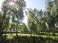 Iskitimsky District, Novosibirsk Oblast, Russia - panoramio (15).jpg