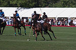 Jaeger-LeCoultre Polo Masters 2013 - 31082013 - Match Legacy vs Jaeger-LeCoultre Veytay for the third place 51.jpg