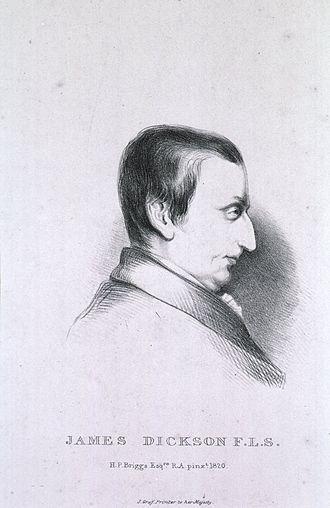 James Dickson (botanist) - James Dickson, 1820 engraving