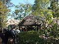 Jardín Japonés de Montevideo 01.JPG