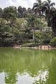 Jardim Zoológico de São Paulo 01.jpg