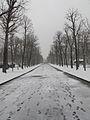 Jardin du Ranelagh - neige 12.jpg