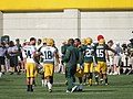 Jared Abbrederis, Randall Cobb, etc. at 2014 Packers training camp.jpg