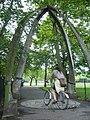 Jawbone Walk, Meadows - geograph.org.uk - 1419465.jpg