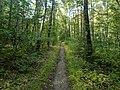 Jay McLaren Memorial Trail, Merrimac MA.jpg