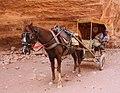 Jordan Petra (5574637590).jpg