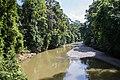 Jungle River (12696026744).jpg