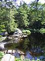 Kejimkujik NP Nova Scotia 1.jpg