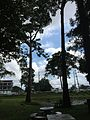 Kham Yai, Mueang Ubon Ratchathani District, Ubon Ratchathani 34000, Thailand - panoramio.jpg