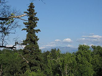 Kincaid Park - View across Cook Inlet